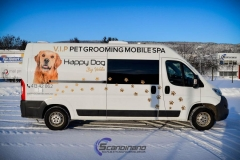 Bildekor - Solfilm, Happy Dog Spa-