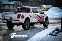 Ford f 150 dekor design Scandinano  (16 of 19)