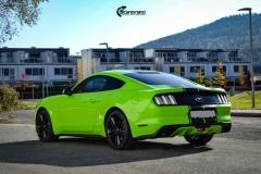 Ford Mustang helfoliert i Gloss Light Green fra 3M (7 из 12)