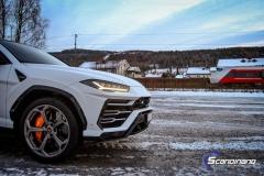 Lamborghini Urus helfoliert med Satin Frozen Vanilla-4