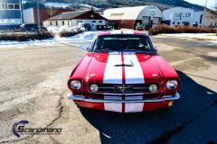 Mustang GT 350 foliert med red med racing striper