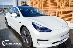 Tesla Model 3 foliert med lakkbeskyttelsesfilm-11