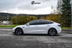 Tesla Model 3 helfoliert i Matt lakkbeskyttelsesfilm fra STEK (1 из 15)