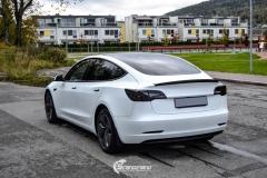 Tesla Model 3 helfoliert i Matt lakkbeskyttelsesfilm fra STEK (7 из 15)