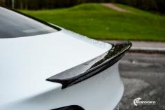 Tesla Model 3 helfoliert i Matt lakkbeskyttelsesfilm fra STEK (9 из 15)