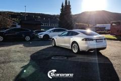 Tesla white-7