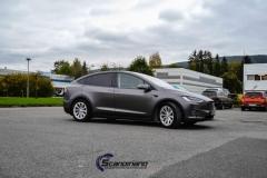 Tesla-X-Scandinano-Foliering_-14