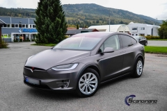 Tesla-X-Scandinano-Foliering_-15