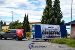 coop decor-6